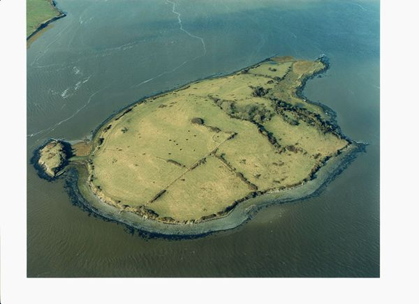 m_Shore-Island-Shannon-Estuary-Co